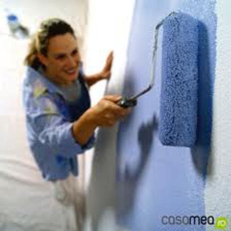 Poza pentru categoria Vopsea lavabila